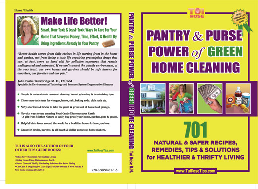Pantry & Purse Power of Green Home Cleaning